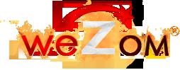 logo_wezom